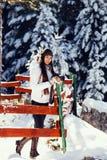 与照相机的性感的妇女旅行在多雪的森林里 免版税库存照片