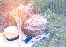 与照相机的篮子和花,野餐设置的帽子在草甸 库存照片