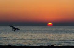 与照相机的飞行寄生虫在日落的天空 免版税库存图片