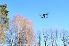 与照相机的飞行寄生虫 免版税库存图片