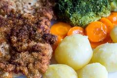 与煮沸的菜、土豆和葱的猪肉炸肉排 奥地利 免版税图库摄影