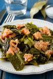 与熏制鲑鱼的沙拉圆白菜 免版税库存图片
