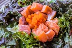 与熏制鲑鱼的蔬菜叶沙拉 免版税库存照片