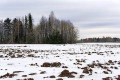 与熔化的雪的被犁的领域在早期的春天 免版税库存照片