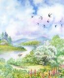 与燕子的春天风景 库存图片