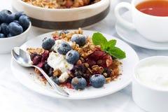 与燕麦剥落、奶油和蓝莓的莓果碎屑 免版税图库摄影