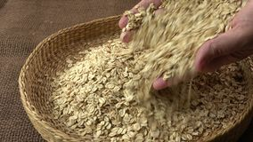 与燕麦剥落的篮子 股票录像