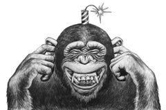与爆竹的猴子 库存例证