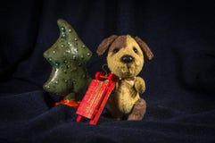 与爬犁的被察觉的狗在一棵绿色树附近 免版税库存图片