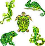 与爬行动物的集合,是很多传染媒介动物,与一个样式的一个动物在身体,蜥蜴爬行,一只大青蛙,有毒 免版税库存图片