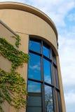 与爬行物的现代建筑学在墙壁和蓝天上 库存照片