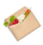 与爱、秋天与荚莲属的植物和叶子的信封 免版税库存照片