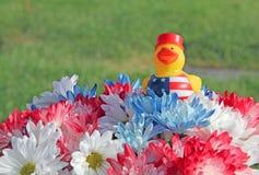 与爱国黄色橡胶鸭子的红色白色蓝色妈咪和雏菊花 免版税库存图片