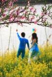 与爱恋的夫妇的桃子开花 免版税图库摄影