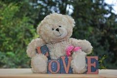 与爱石头的白色玩具熊和玫瑰 免版税库存照片