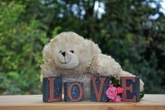 与爱石头的白色玩具熊和玫瑰 图库摄影
