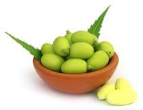 与片剂的医药neem果子 库存图片