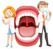 与牙医的人的嘴解剖学 皇族释放例证