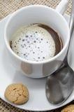 与牛奶泡沫和饼干的咖啡 免版税库存图片