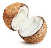 与牛奶飞溅的椰子在白色背景 库存图片