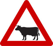 与牛的警报信号在路 皇族释放例证