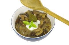 与牛肝菌蕈类的奶油色汤 免版税库存照片