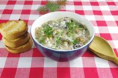 与牛肝菌蕈类的奶油色汤 免版税图库摄影