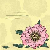 与牡丹的手拉的invitatation卡片 免版税库存照片
