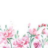 与牡丹的花卉无缝的水彩边界 水彩传染媒介 免版税库存照片