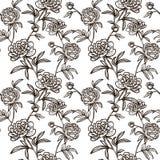 与牡丹的花无缝的模式 免版税库存照片