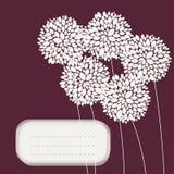 与牡丹的逗人喜爱的独特的花卉卡片 库存图片