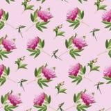 与牡丹花的传染媒介花卉无缝的样式 免版税库存图片