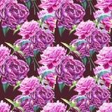 与牡丹花的无缝的背景 额嘴装饰飞行例证图象其纸部分燕子水彩 图表手拉的花卉样式 织物 库存图片