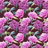 与牡丹花的无缝的背景 额嘴装饰飞行例证图象其纸部分燕子水彩 图表手拉的花卉样式 织物 免版税库存照片
