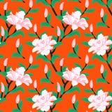与牡丹花的花卉无缝的传染媒介样式 免版税图库摄影