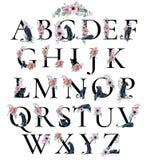 与牡丹银莲花属的水彩字母表开花和黑豹 浪漫花卉字体 组合图案设计 皇族释放例证