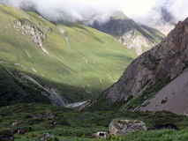 与牦牛的高喜马拉雅风景 库存照片