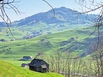 与牧场的农村传统建筑学在Appenzellerland地区和Alpstein山脉的 免版税库存照片