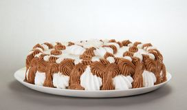 与特制的糕饼的盘 库存图片