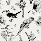 与狂放的热带植物群和动物区系的无缝的样式 库存图片