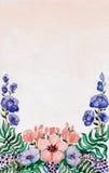 与狂放的蓝色和红色花的水彩卡片 库存照片