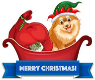与狗和礼物的圣诞节题材在爬犁 免版税图库摄影
