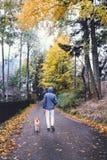 与狗的人步行在秋天街道上 免版税库存图片