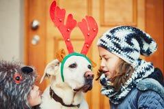 与狗的圣诞节步行 库存照片