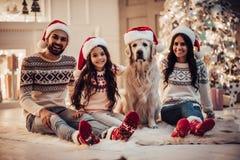 与狗的家庭在新年` s伊芙 免版税库存照片