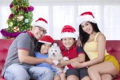 与狗的快乐的家庭在圣诞节时间 免版税库存照片