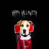 与狗的愉快的万圣夜海报在吸血鬼服装 免版税库存照片