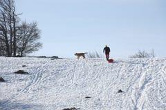 与狗的步行在雪 免版税库存照片