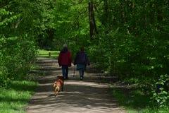 与狗的步行通过公园 免版税库存照片