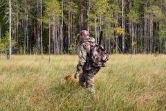 与狗的猎人在秋天狩猎的沼泽 库存照片